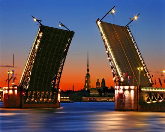 Экспертный совет по вопросам цифрового развития создали в Ленинградской области